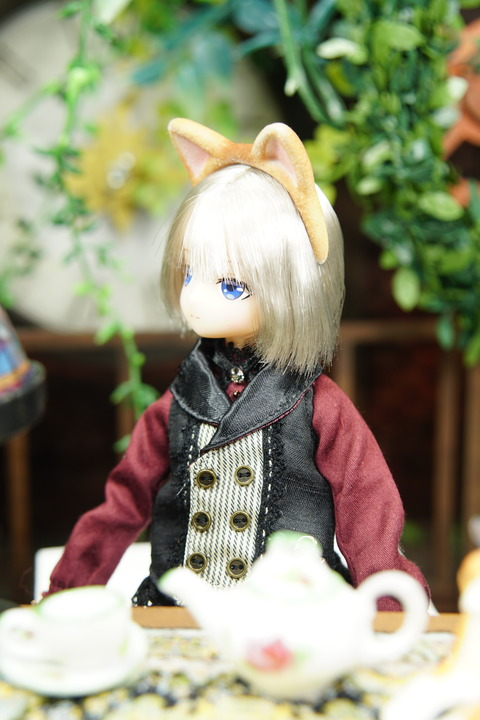 orange_pekoe_6_2019_9_6_DSC07687