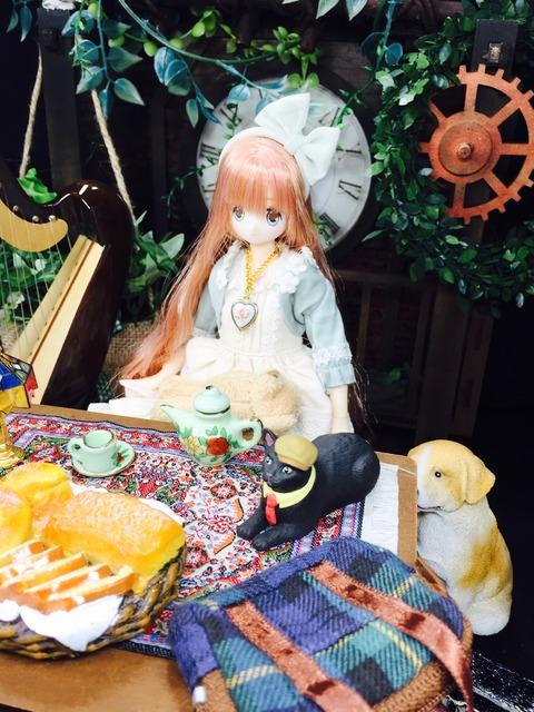 orange_pekoe_4_2019_12_2_IMG_7305