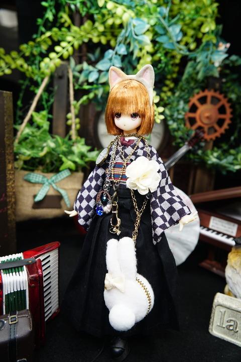 orange_pekoe_5_2020_7_16_DSC00181
