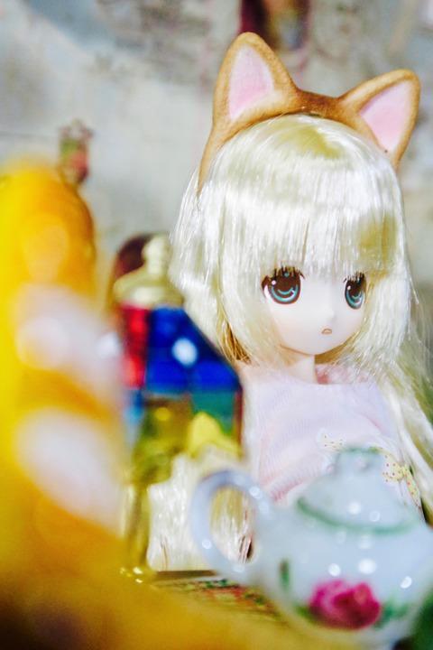 orange_pekoe_2_2020_5_12_IMG_9092
