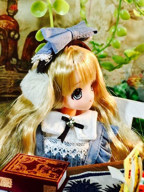 orange_pekoe_5_2019_10_14_IMG_1858