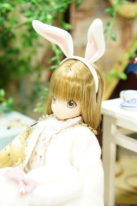 orange_pekoe_6_2020_3_29_DSC09655