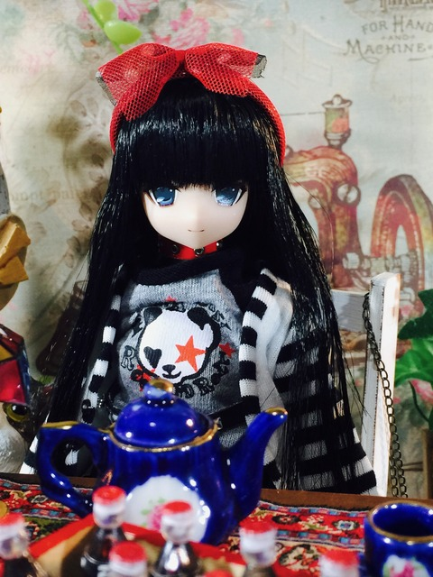 orange_pekoe_1_2017_11_26_IMG_1114