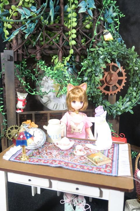 orange_pekoe_1_2017_4_25_IMG_6801