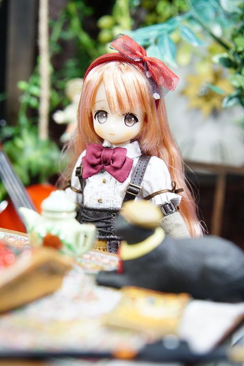orange_pekoe_2_2019_4_8_DSC03353