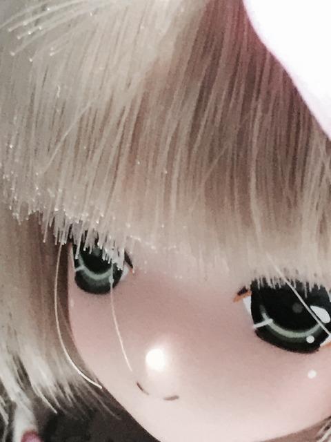 orange_pekoe_5_2015_11_29_IMG_4335