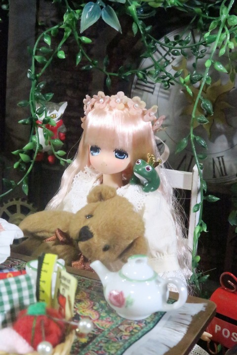 orange_pekoe_1_2016_9_26_IMG_3484