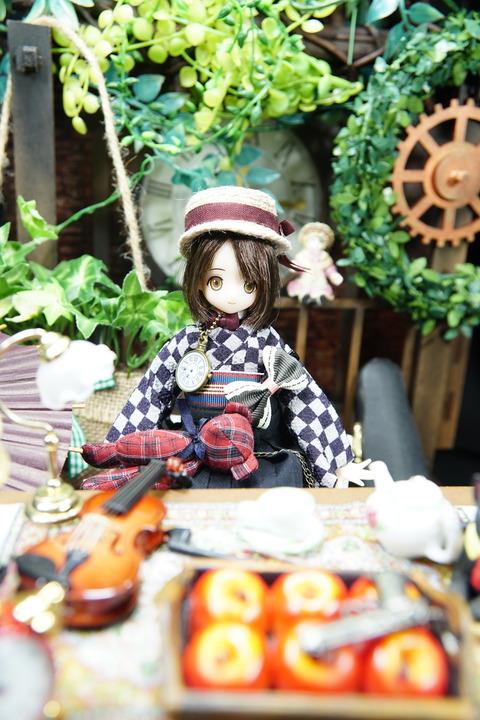 orange_pekoe_8_2019_6_10_DSC05492