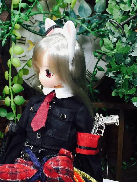 orange_pekoe_4_2018_11_22_IMG_5920