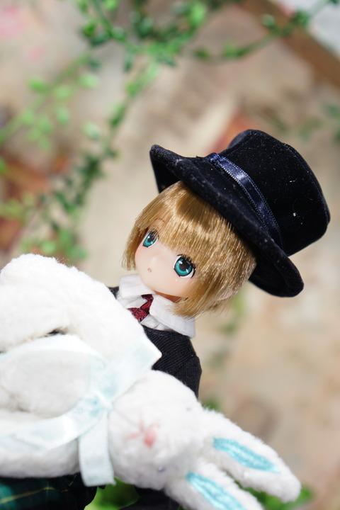 orange_pekoe_6_2020_7_12_DSC03094