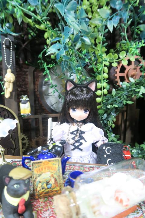 orange_pekoe_1_2017_7_7_IMG_7683