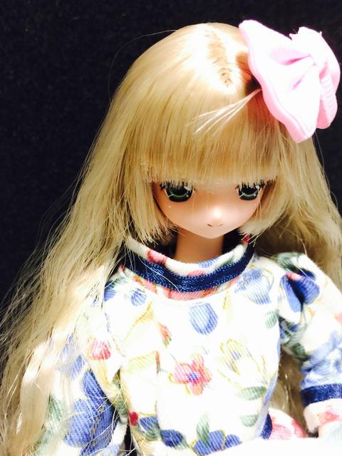 orange_pekoe_1_2015_11_28_IMG_4323