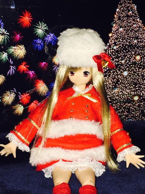 orange_pekoe_1_2015_12_24_IMG_5199