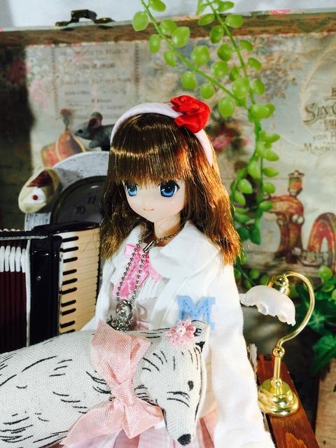 orange_pekoe_2_2017_2_27_IMG_1034