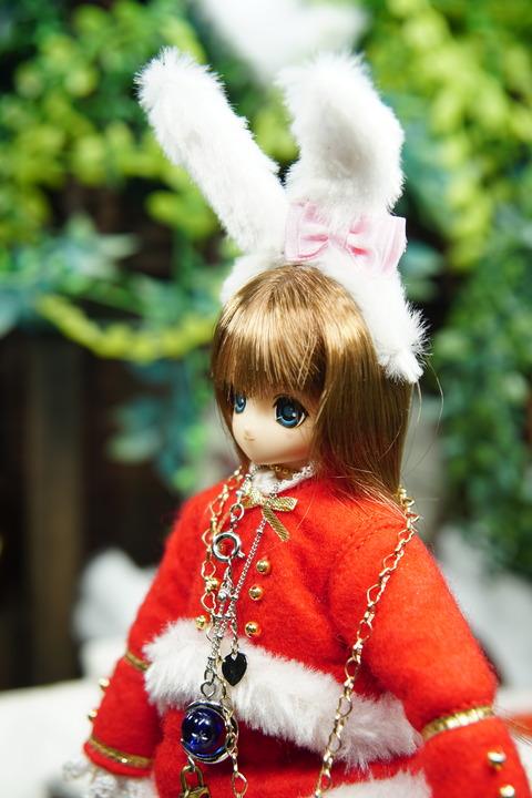 orange_pekoe_5_2019_12_25_DSC06288