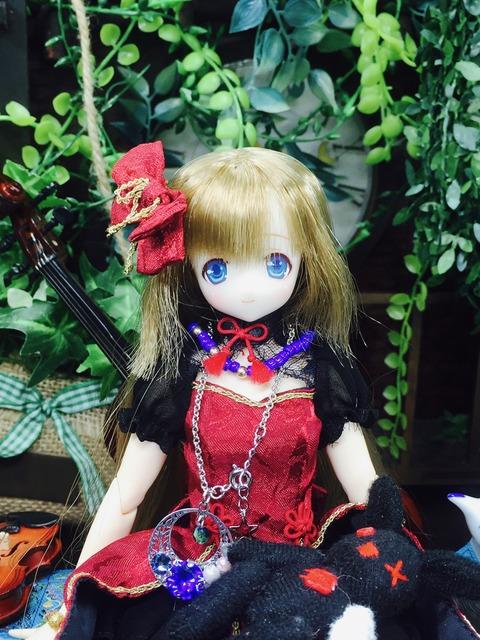 orange_pekoe_1_2020_6_14_IMG_2645