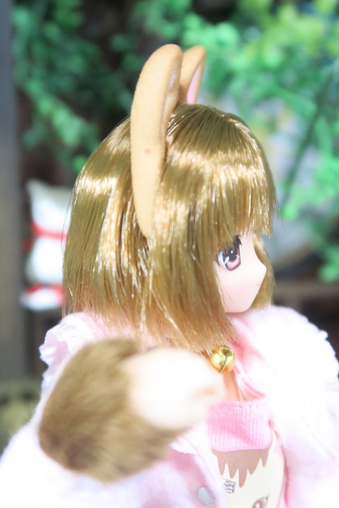 orange_pekoe_4_2017_4_30_IMG_6889