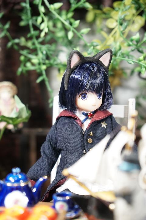 orange_pekoe_5_2021_5_9_DSC00521