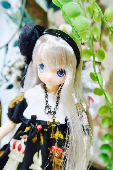 orange_pekoe_4_2020_3_19_IMG_6145