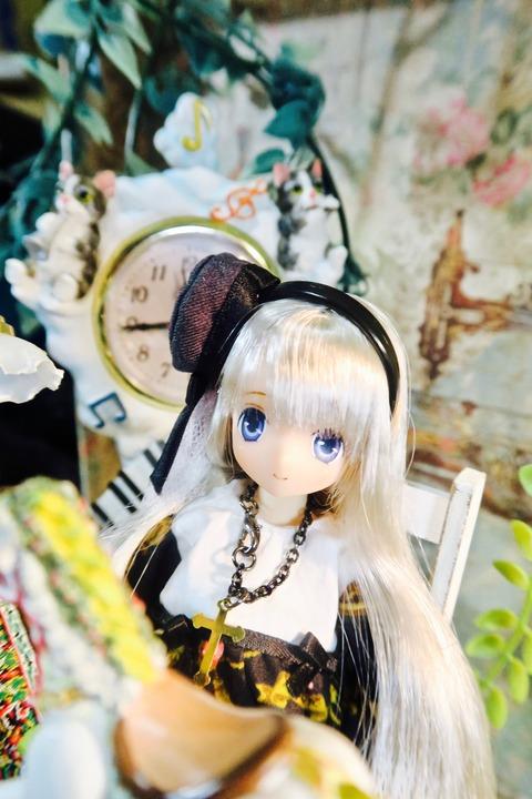 orange_pekoe_1_2017_7_10_IMG_6068