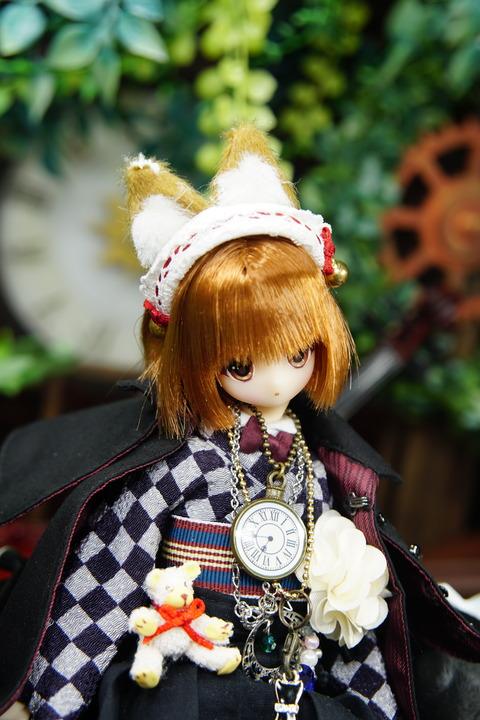 orange_pekoe_4_2020_7_16_DSC00108