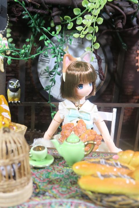 orange_pekoe_7_2017_8_13_IMG_8209