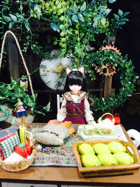orange_pekoe_1_2017_12_16_IMG_6990