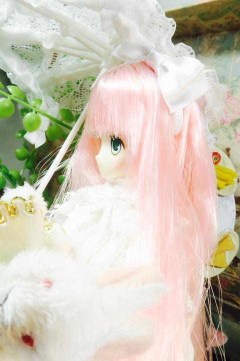 orange_pekoe_6_2017_4_13_IMG_6628