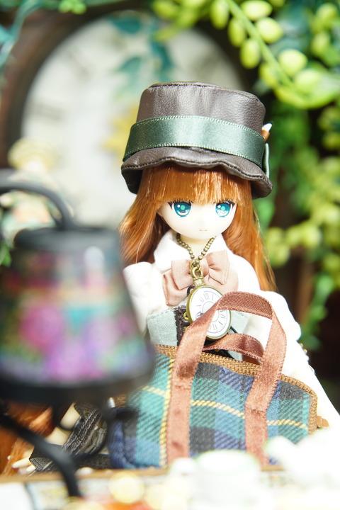orange_pekoe_2_2020_2_6_DSC09365
