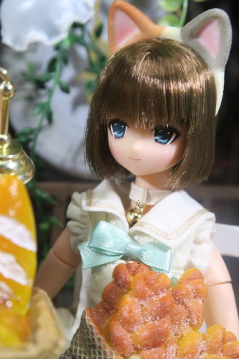 orange_pekoe_6_2017_8_13_IMG_8241
