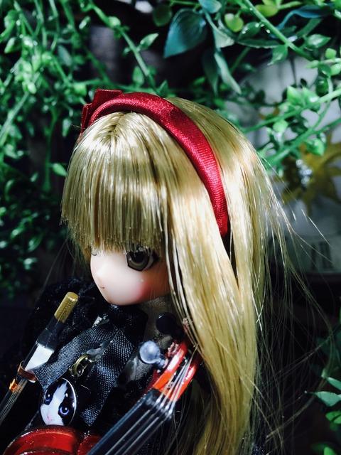 orange_pekoe_5_2019_9_14_IMG_0543