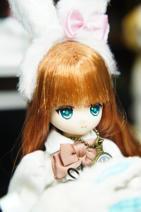 orange_pekoe_2_2019_10_3_DSC09506