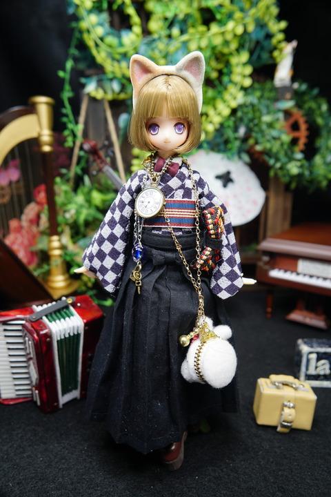 orange_pekoe_1_2020_5_17_DSC07428