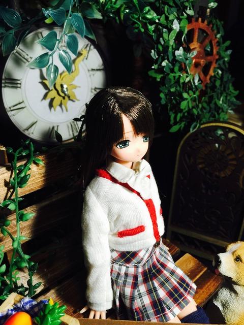 orange_pekoe_8_2016_7_22_IMG_6684