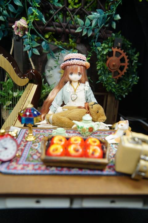 orange_pekoe_7_2019_11_21_DSC02202