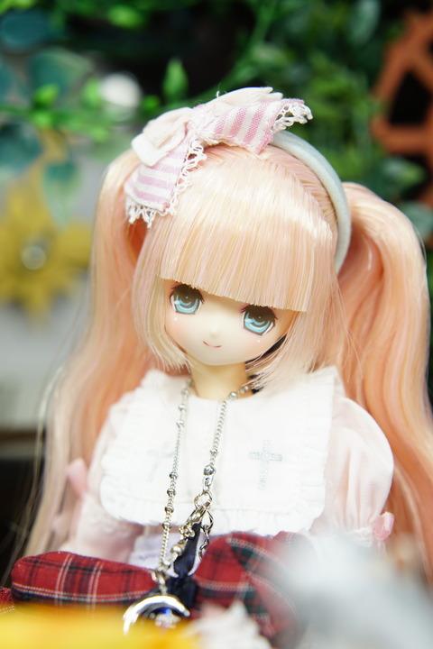 orange_pekoe_1_2019_9_10_DSC08584