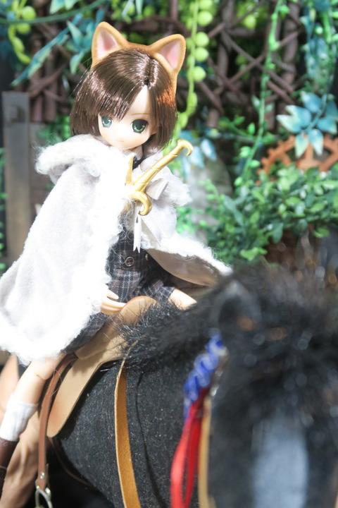 orange_pekoe_1_2017_4_29_IMG_7018