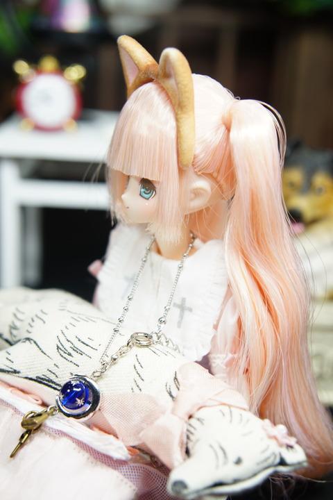 orange_pekoe_5_2019_9_10_DSC08698
