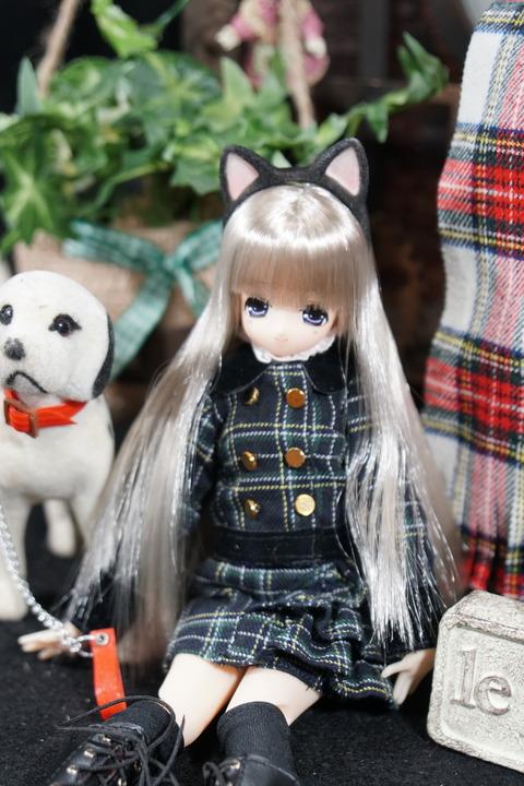 orange_pekoe_3_2018_5_29_DSC00867