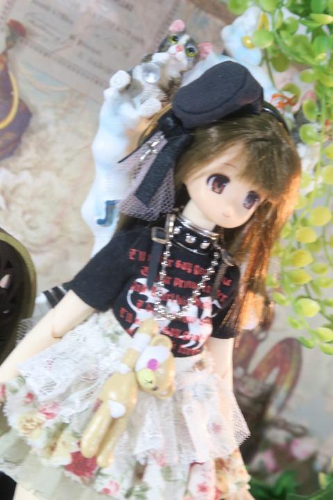orange_pekoe_7_2017_1_29_IIMG_6021