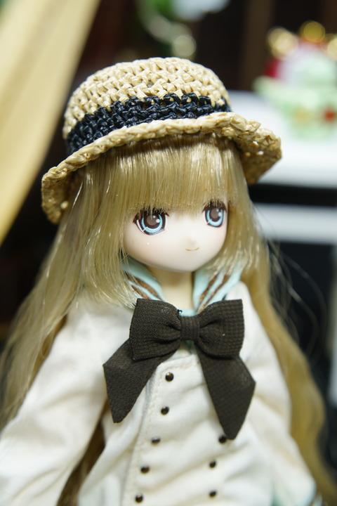 orange_pekoe_2_2019_11_5_DSC01311