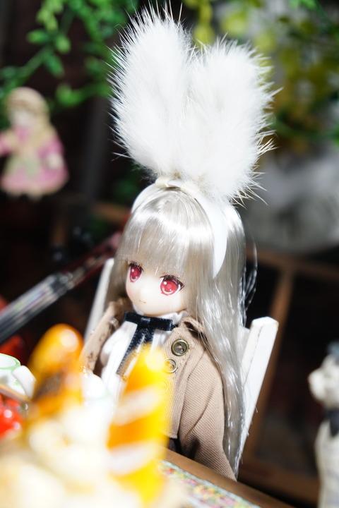 orange_pekoe_3_2020_1_15_DSC02551