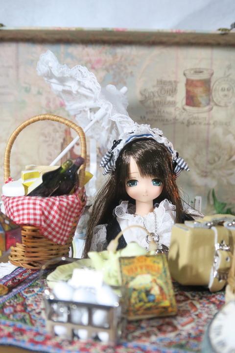 orange_pekoe_6_2017_8_16_IMG_7397