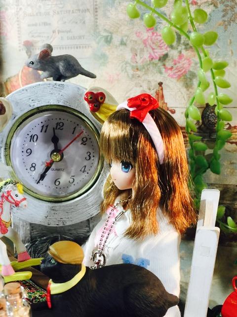 orange_pekoe_1_2017_2_26_IMG_1005