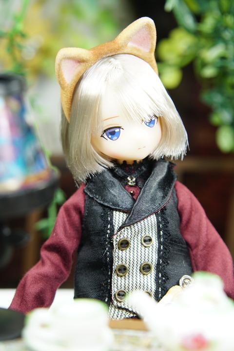 orange_pekoe_3_2019_9_6_DSC07668