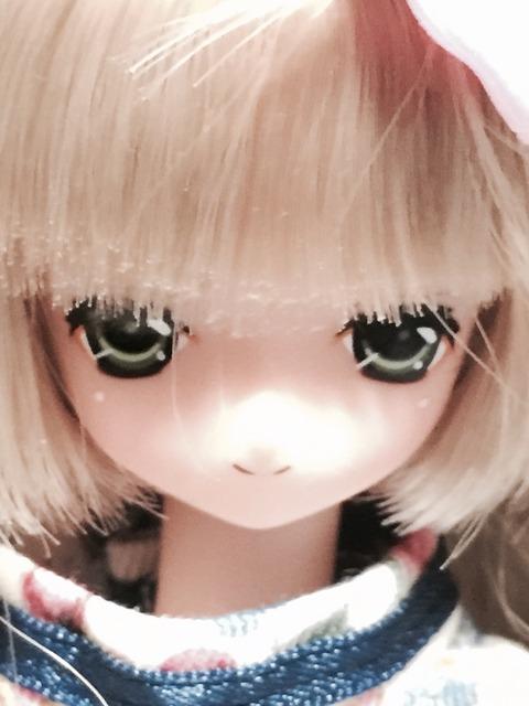 orange_pekoe_10_2015_11_29_IMG_4409