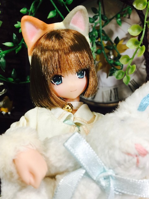 orange_pekoe_5_2017_8_25_IMG_5023