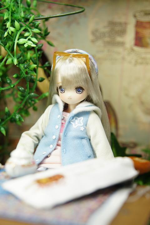orange_pekoe_3_2018_11_29_DSC00338