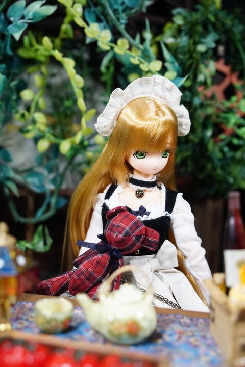 orange_pekoe_5_2018_5_31_DSC03660