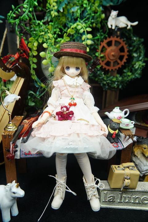 orange_pekoe_1_2021_3_10_DSC08383